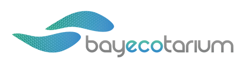 bay-ecotarium-our-future-logo-001-500x144